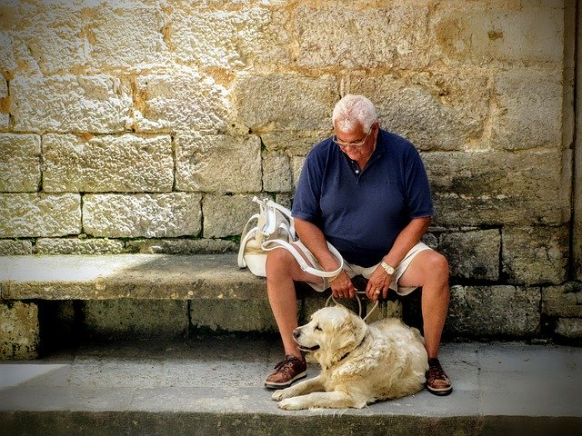 What to do with elderly parents pets?