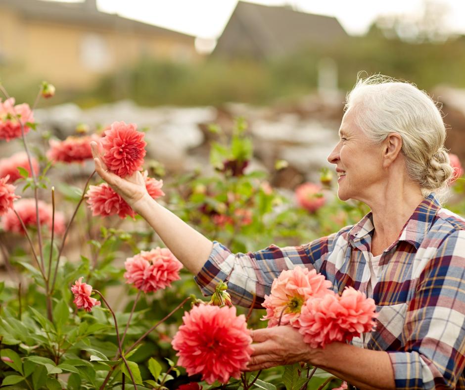 Activities For Seniors: Try Volunteering